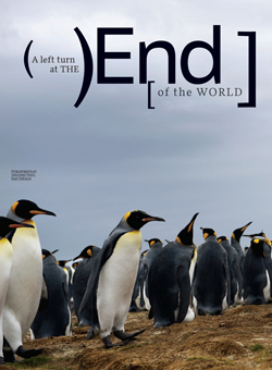 Article cover image of a group of penguins