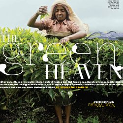 The Green Heaven
