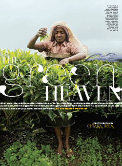 The Green Heaven article cover