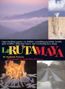 LaRuta Maya Article Cover