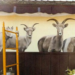Helping Endangered Species—One Mural at a Time