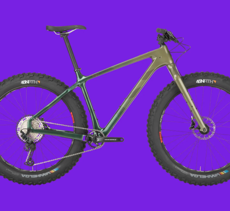 Review: Salsa Cycles Beargrease Carbon SLX